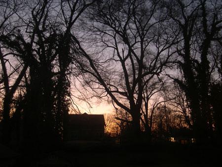 Westview sunset