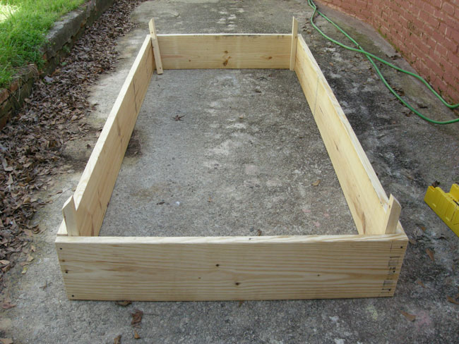 Basic Raised Bed for Vegtables