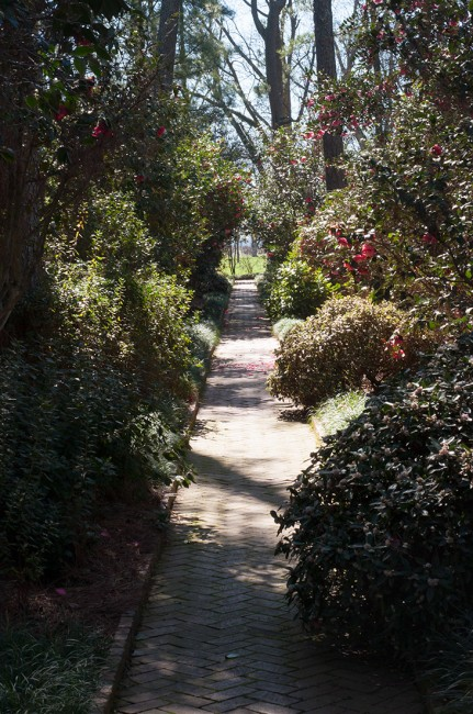 Massee Lane Gardens